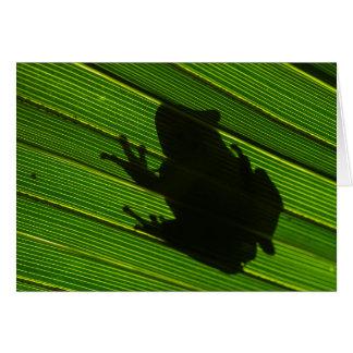 Green Tree Frog (Hyla cinerea) 1 Greeting Card