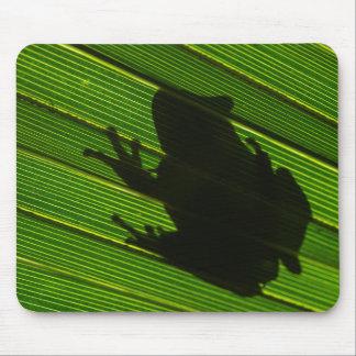 Green Tree Frog (Hyla cinerea) 1 Mouse Mat