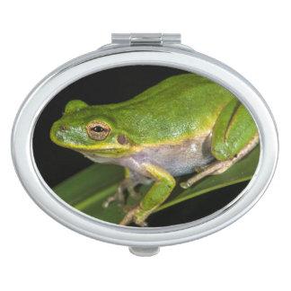 Green Tree Frog (Hyla cinerea) 2 Mirror For Makeup