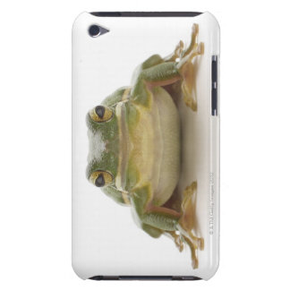 Green tree frog (Hylidae cinerea) Barely There iPod Cases