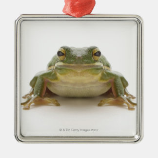 Green tree frog (Hylidae cinerea) Christmas Ornament