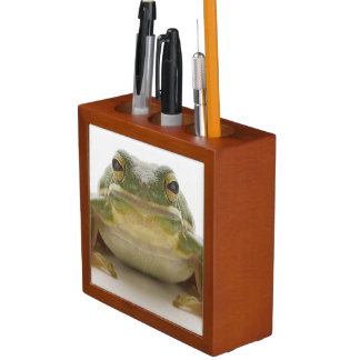 Green tree frog (Hylidae cinerea) Desk Organiser