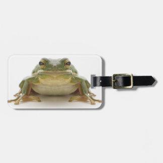 Green tree frog (Hylidae cinerea) Luggage Tag