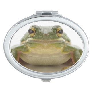 Green tree frog (Hylidae cinerea) Makeup Mirror