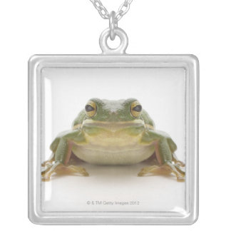 Green tree frog (Hylidae cinerea) Silver Plated Necklace