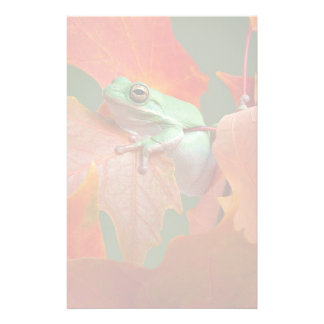 Green Tree Frog In Fall Customized Stationery