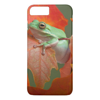 Green Tree Frog In Fall iPhone 8 Plus/7 Plus Case