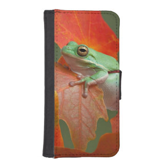 Green Tree Frog In Fall iPhone SE/5/5s Wallet Case