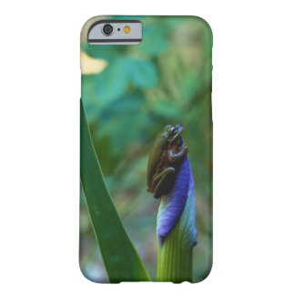 Green Tree Frog on Iris Barely There iPhone 6 Case