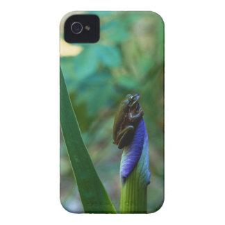 Green Tree Frog on Iris iPhone 4 Case