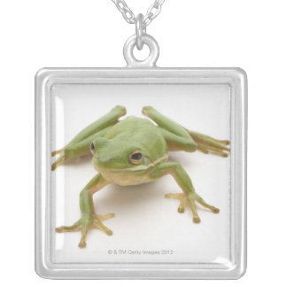 Green Tree Frog Silver Plated Necklace