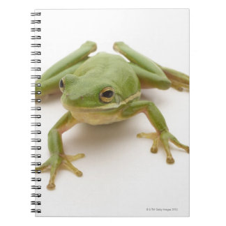 Green Tree Frog Spiral Note Book