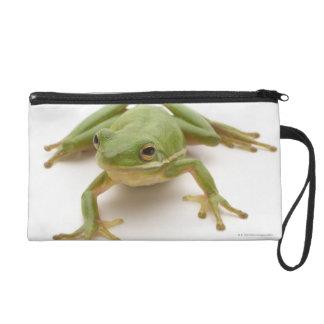 Green Tree Frog Wristlet