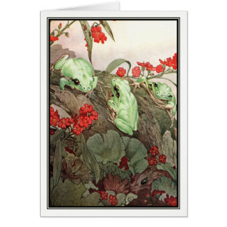 Green Tree Frogs by E. J. Detmold Card
