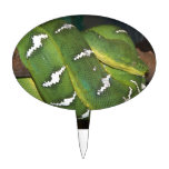 Green Tree Python Cake Topper