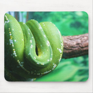Green Tree Python Mousepad