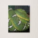 Green Tree Python Puzzle