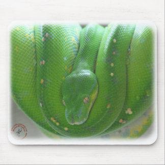 Green Tree Snake 9Y195D-028 Mousepads