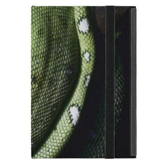 Green tree snake emerald boa in Bolivia Cases For iPad Mini