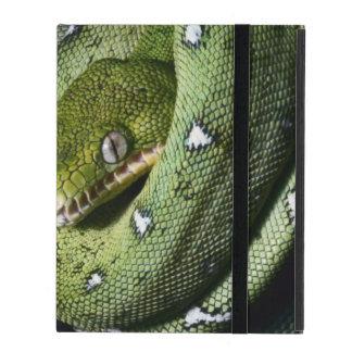 Green tree snake emerald boa in Bolivia iPad Covers