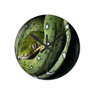 Green tree snake emerald boa in Bolivia Wall Clocks
