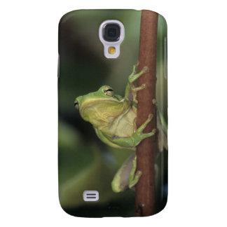 Green Treefrog, Hyla cinerea, adult on yellow Galaxy S4 Case