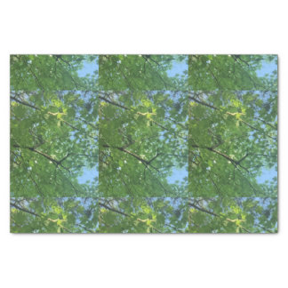 Green Trees Blue Sky Tissue Paper