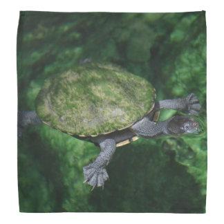 Green Turtle Bandana