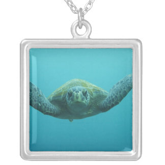 Green Turtle (Chelonia mydas agassisi), Central Silver Plated Necklace