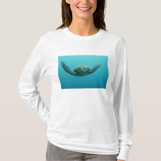 Green Turtle (Chelonia mydas agassisi), Central T-Shirt