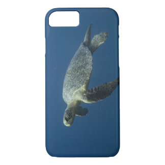 Green Turtle (Chelonia mydas agassisi) off Wolf iPhone 7 Case