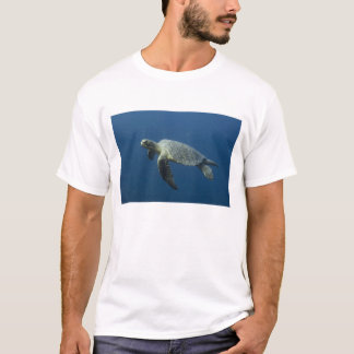 Green Turtle (Chelonia mydas agassisi) off Wolf T-Shirt