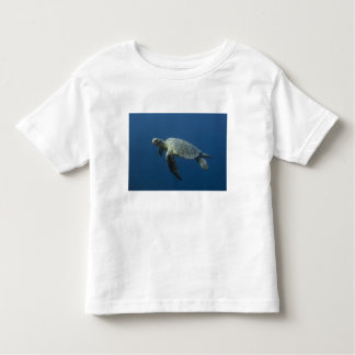 Green Turtle (Chelonia mydas agassisi) off Wolf Toddler T-Shirt