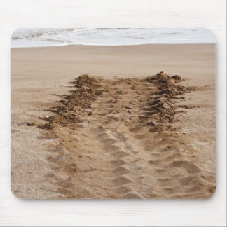 Green Turtle Chelonia mydas agassisi) Tracks Mouse Mat