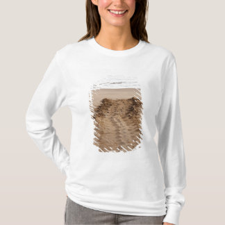 Green Turtle Chelonia mydas agassisi) Tracks T-Shirt