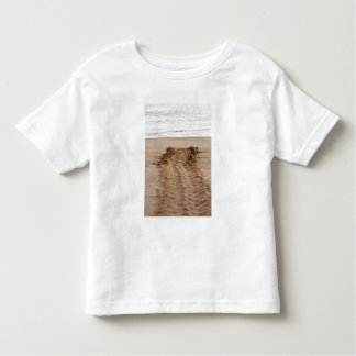 Green Turtle Chelonia mydas agassisi) Tracks Toddler T-Shirt