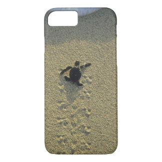 Green Turtle, (Chelonia mydas), hatchling iPhone 8/7 Case