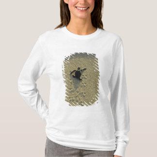 Green Turtle, (Chelonia mydas), hatchling T-Shirt