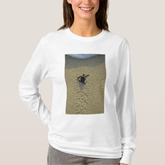 Green Turtle, (Chelonia mydas), hatchling T-Shirt