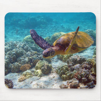 Green Turtle Chelonia Mydas Swimming Mouse Pads