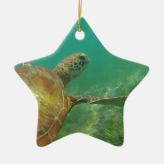 Green-turtle-Great-Barrier-Reef.JPG Christmas Ornament