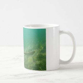 Green-turtle-Great-Barrier-Reef.JPG Coffee Mug