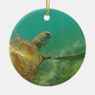 Green-turtle-Great-Barrier-Reef.JPG Round Ceramic Decoration