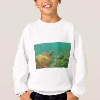 Green-turtle-Great-Barrier-Reef.JPG Sweatshirt
