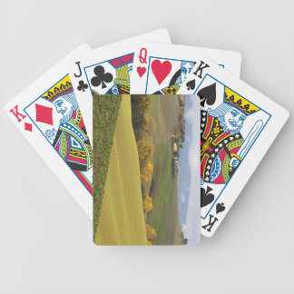 Green Tuscan Countryside Bicycle Card Decks
