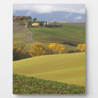 Green Tuscan Countryside Display Plaque