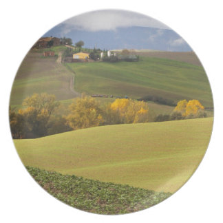 Green Tuscan Countryside Party Plates