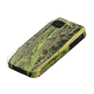 Green Valley Case For The iPhone 4