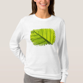 Green veined leaves of tropical foliage in 2 T-Shirt
