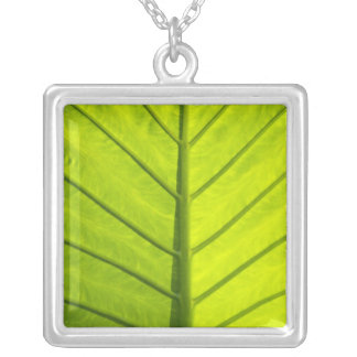 Green veined leaves of tropical foliage in silver plated necklace